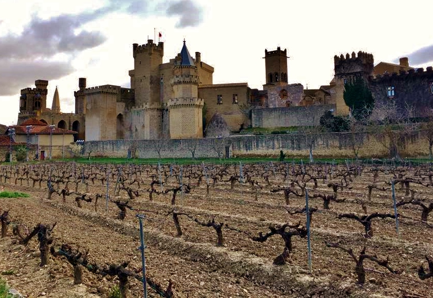 Castillo-de-Olite-Erriberri